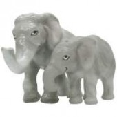 Elephant Salt &  Pepper
