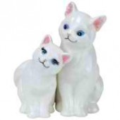 White Kittens Salt & Pepper